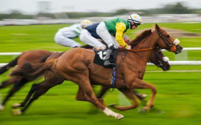 Sucesso como Corrida de Cavalos