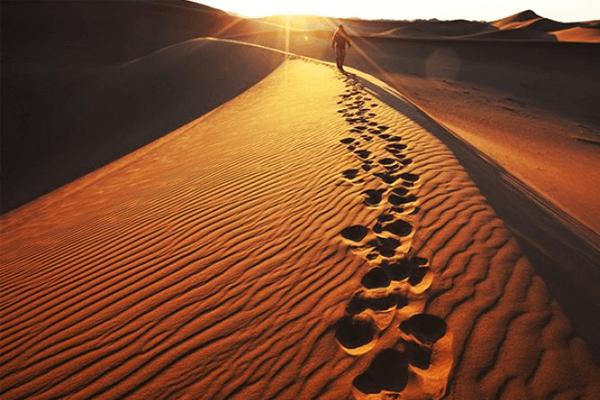 Desertos x Aprendizado